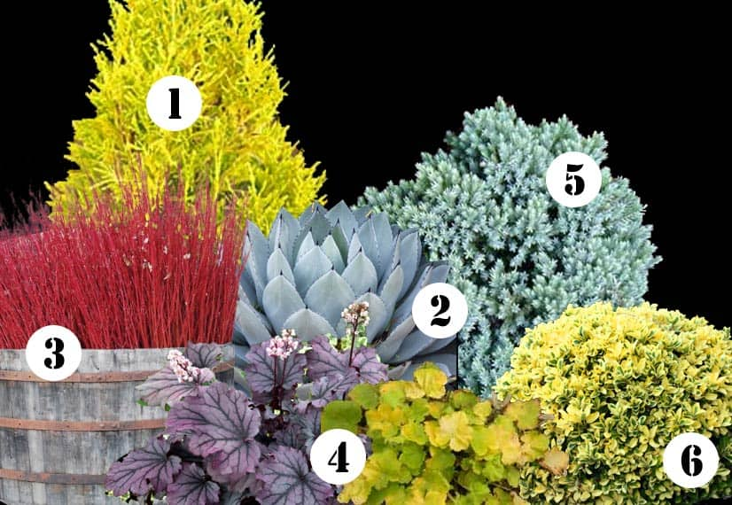 front yard landscaping plans shrubs pdf