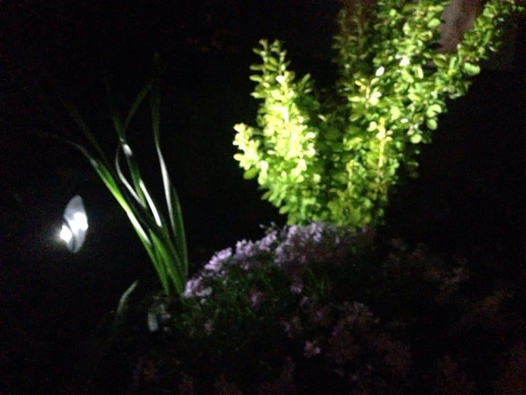 solar lighting spotlights