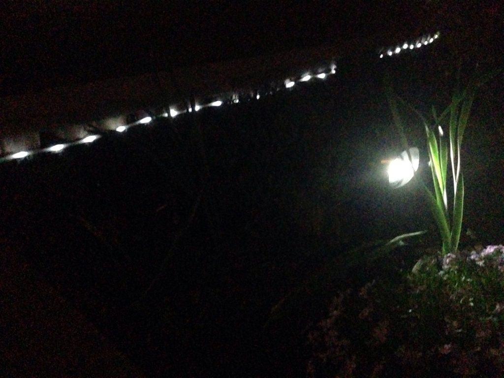 solar lighting: rope lighting
