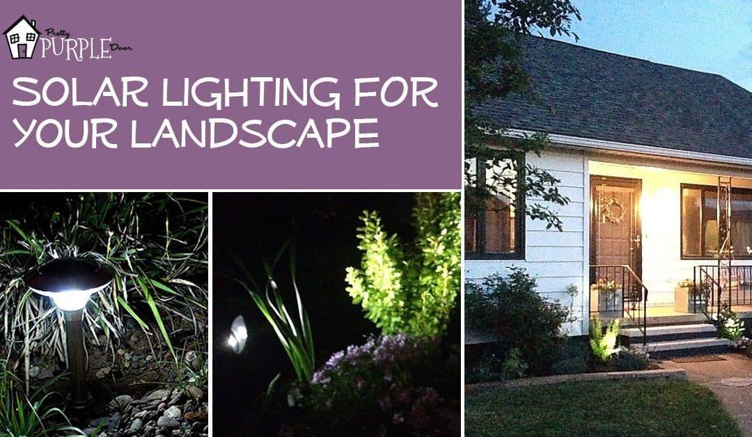 Solar Lighting Lights Up Your Landscape