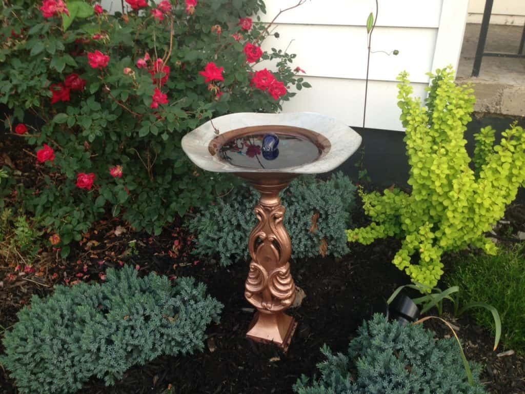 solar birdbath fountain in my front yard