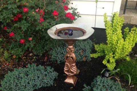 DIY Solar Birdbath Fountain for less than $50!