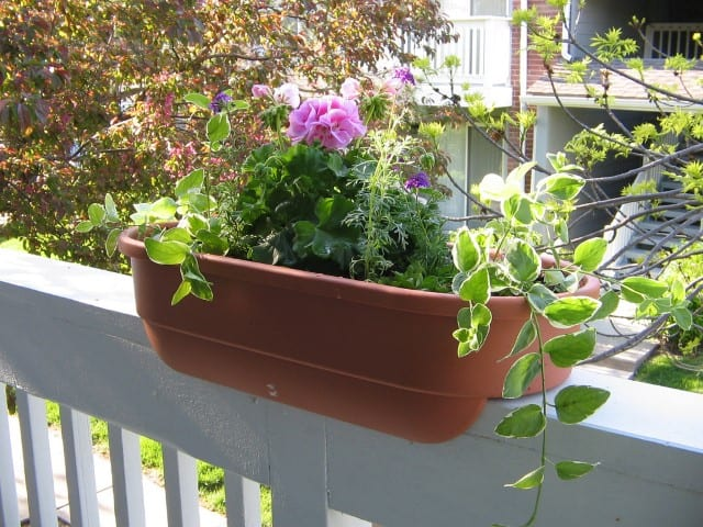 Using railing boxes is another great small garden idea if you are short on space