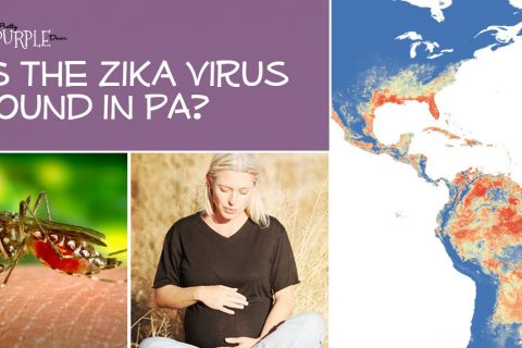 Is Zika Virus in Pennsylvania?