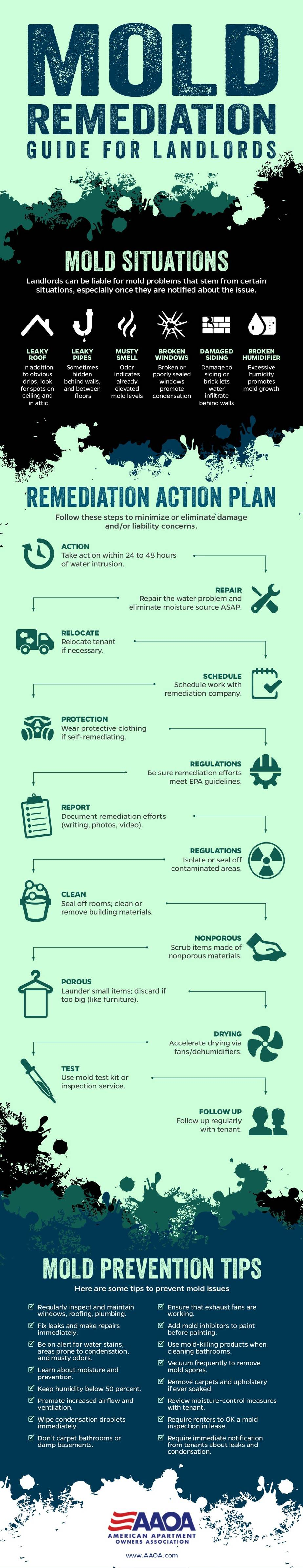 Infographic: Mold Remediation Guide
