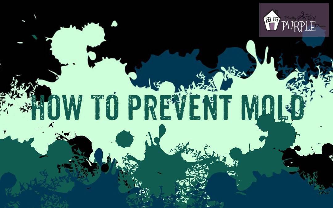 How to Prevent Mold, by PrettyPurpleDoor.com