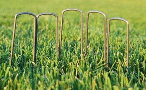 installing linked garden stakes or rounded garden staples could curb your dog's digging