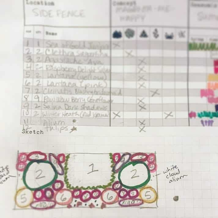 Garden planning worksheet with plant choices and drawing