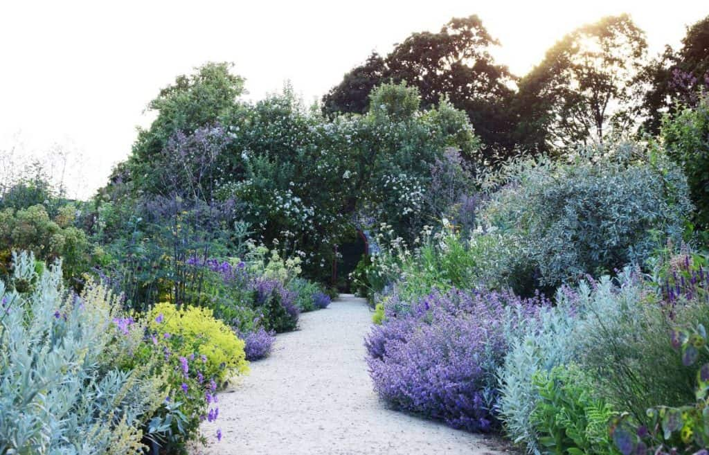 Straight Path with Mixed Garden Borders in blues and purples