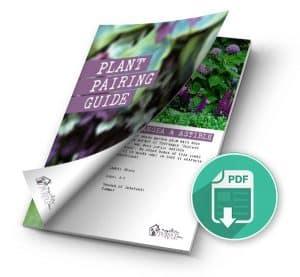 Free Perennial Plant Pairing Guide