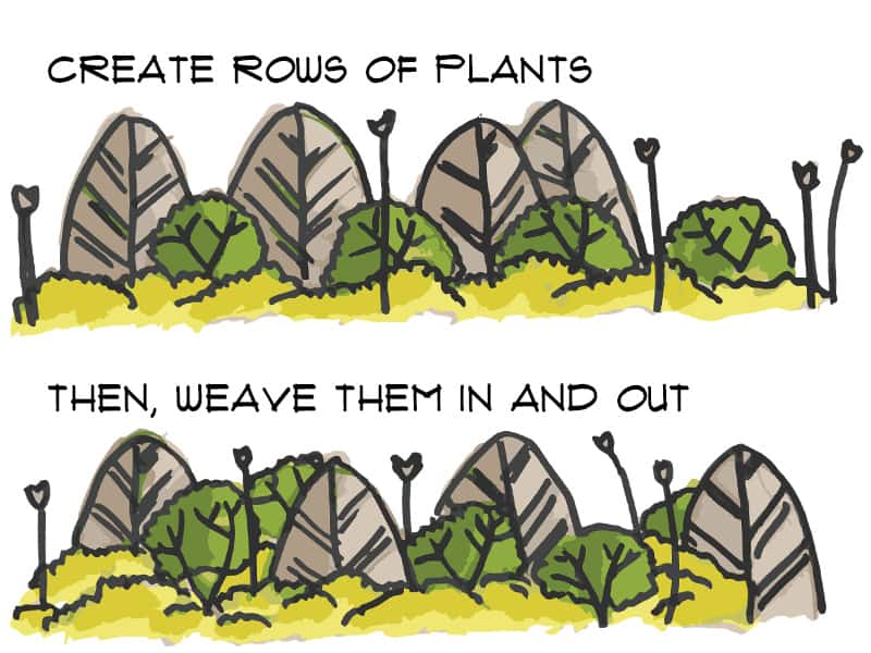 Weave plants in and out of the 3 rows of your garden