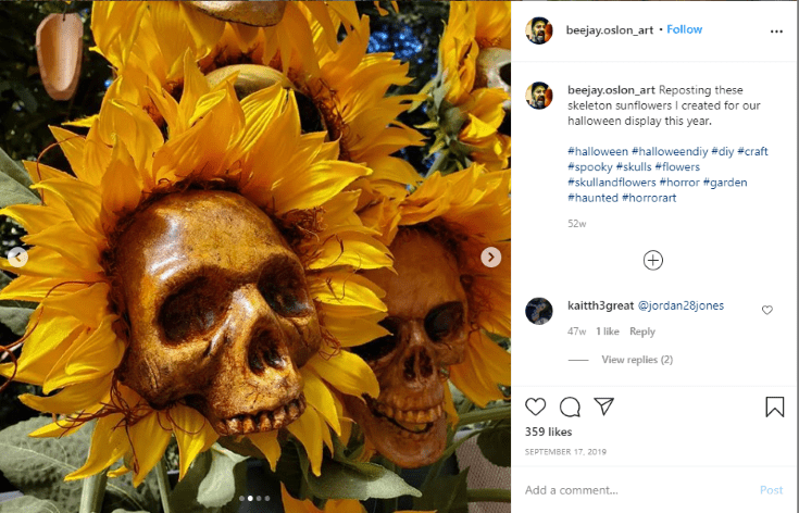closeup of an instagram image of painted skulls on sunflower faces