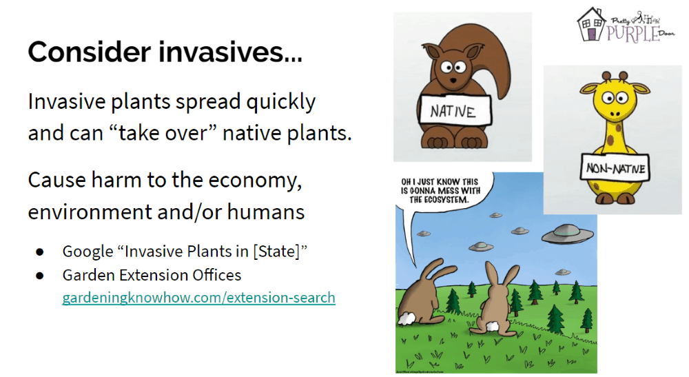 Consider Invasive Plants Slide