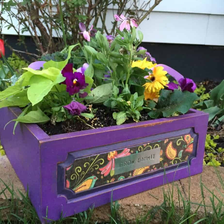 An old drawer becomes a planter