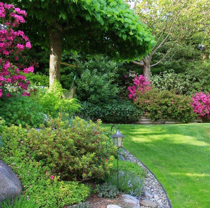curved planting bed with flowering shrubs