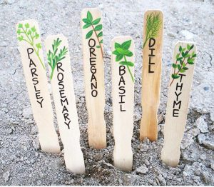 DIY Popsicle Stick Plant Markers