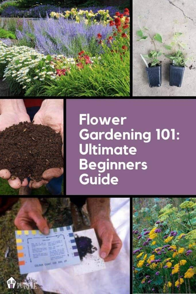 Flower gardening 101 ultimate beginners guide
