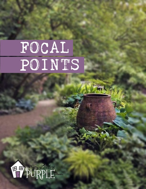Focal Points eBook Cover