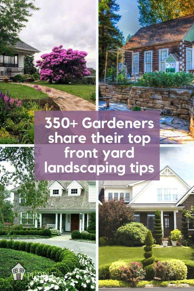 350+ gardeners share their top front yard landscaping tips