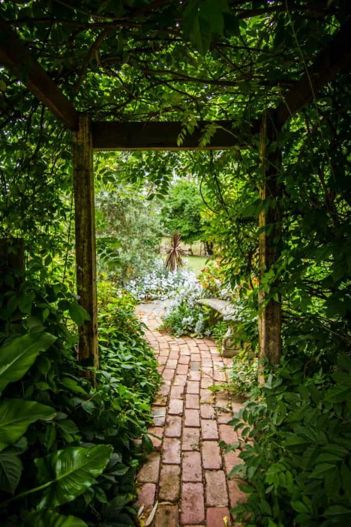 Curving brick walkway through a garden with a vine covered arbor overhead