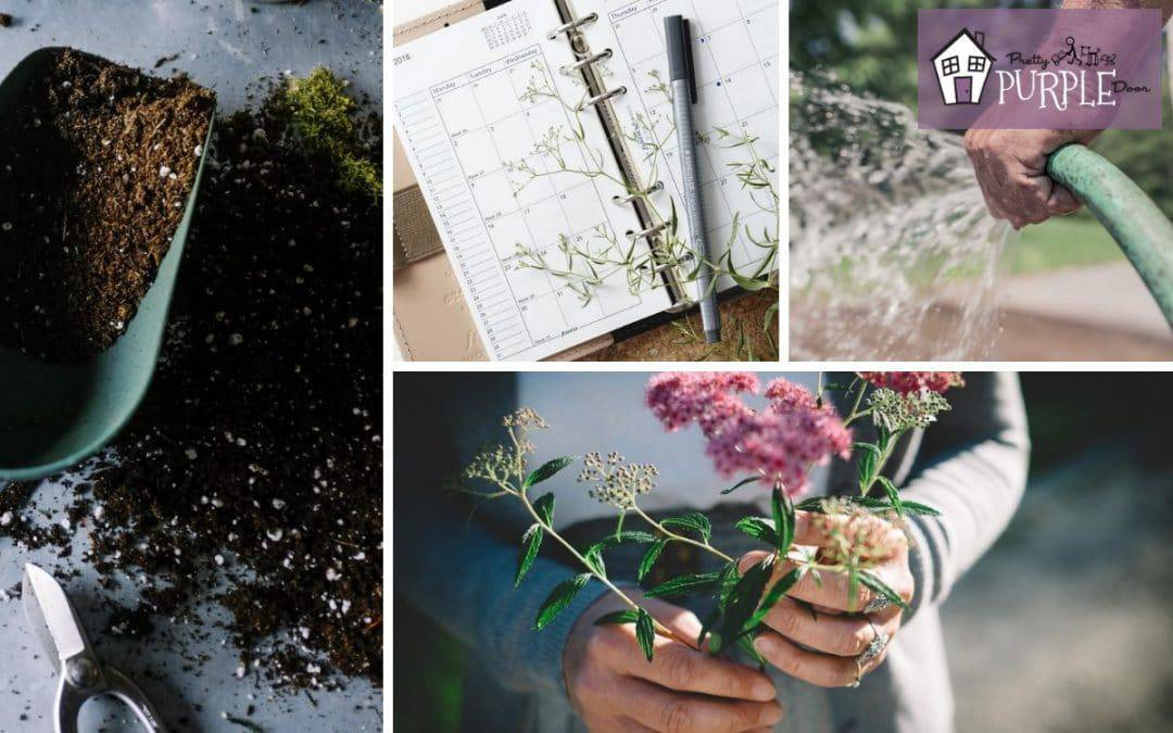 Create a Custom Gardening Calendar (a Step by Step Guide)