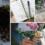 Monthly gardening calendar for busy gardeners