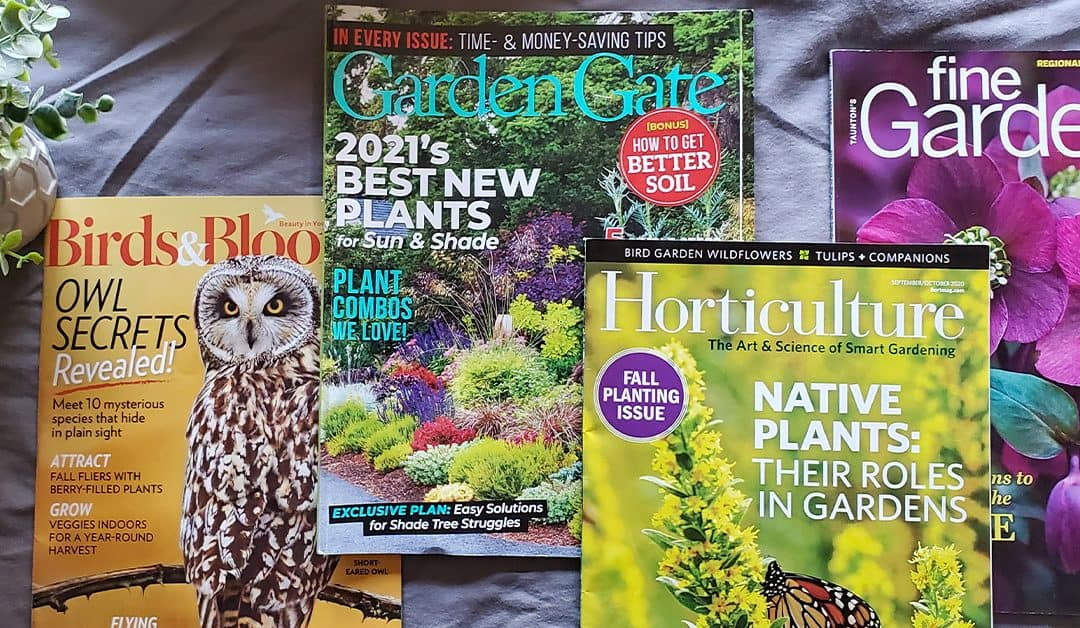 4 Best Gardening Magazines Compared (with Sample Content)