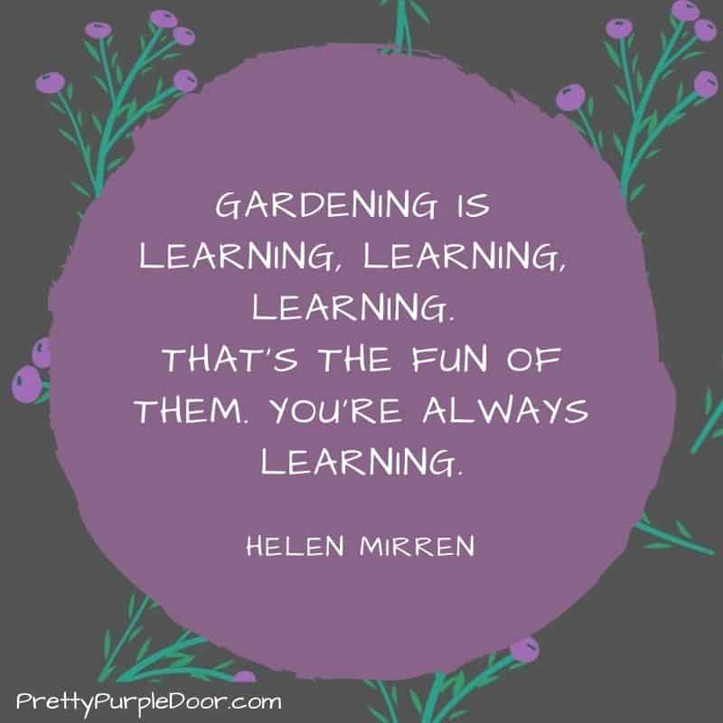Quote Graphic - Gardening is Learning Learning Learning by Helen Mirren