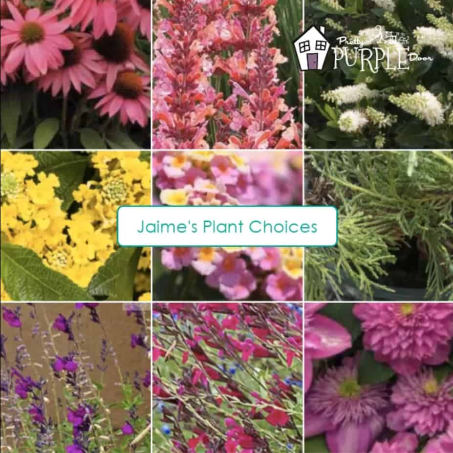 Jaimie's plant selections 9 pink and yellow plants in a grid