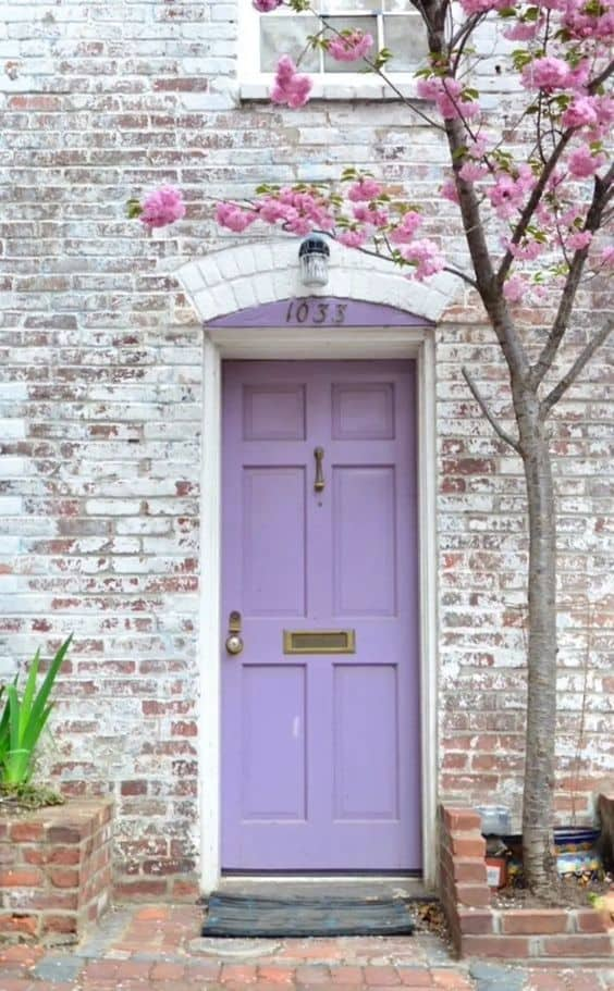 Lavender light purple front door with whitewashed brick and pink flowering tree.