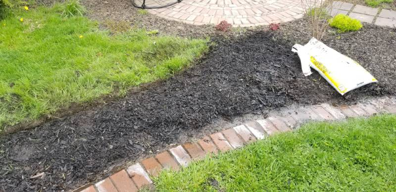 Garden bed no dig with paper, compost and mulch
