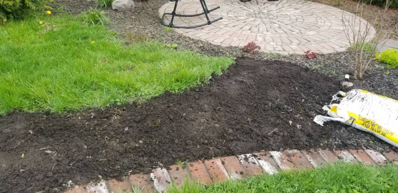 Garden bed no dig with paper, compost