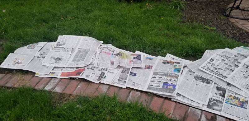 Lay newspaper over the grass