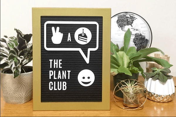 A Plant of the Month Club that includes cool pots and everything else you need to grow success!