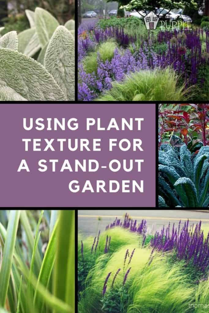 Using plnat texture for a stand-out garden design