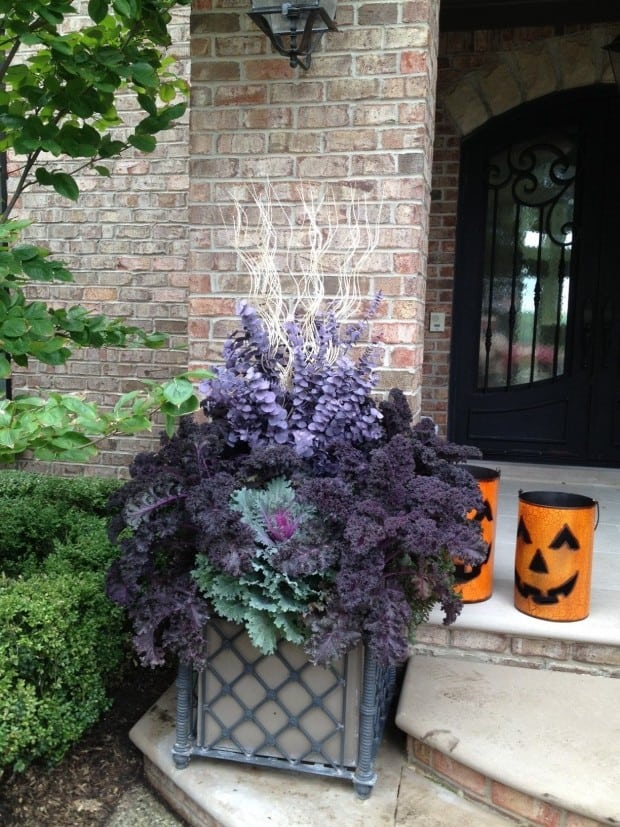 Planter in front of brick house with purple and lavender plants and jackolantern decor