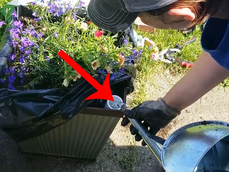 Pouring water into the reservoir of self-watering planter