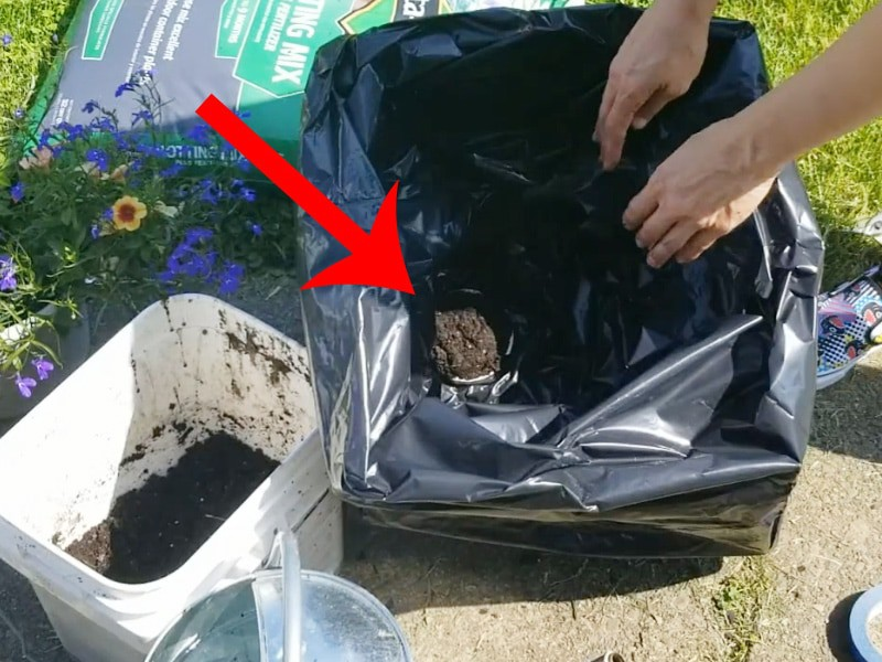 Wicking chamber soil comes through garbage bag