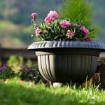 DIY Self Watering Planter