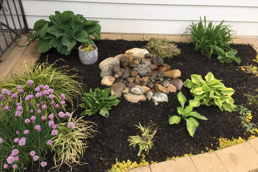 After you plant a plant, adding a 3 inch layer of mulch will protect it.