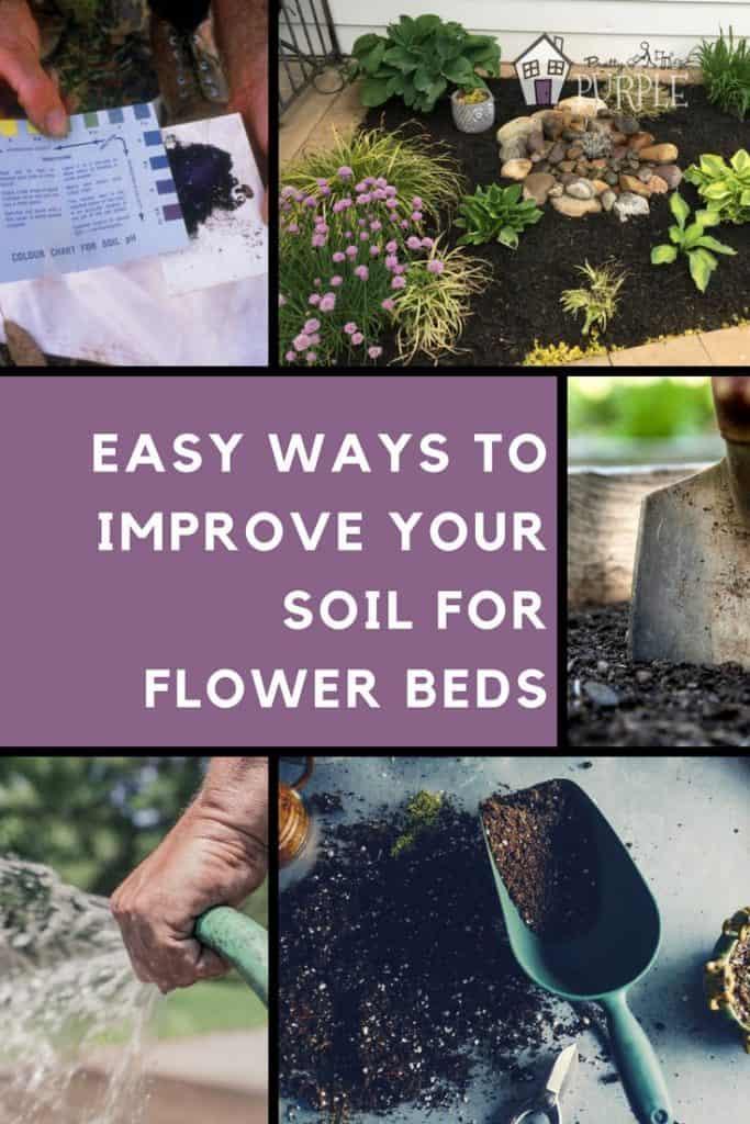 Soil Improvements for flower beds - Pinterest