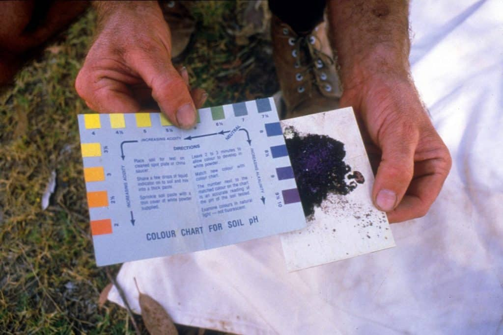 Improve your soil with a pH test kit
