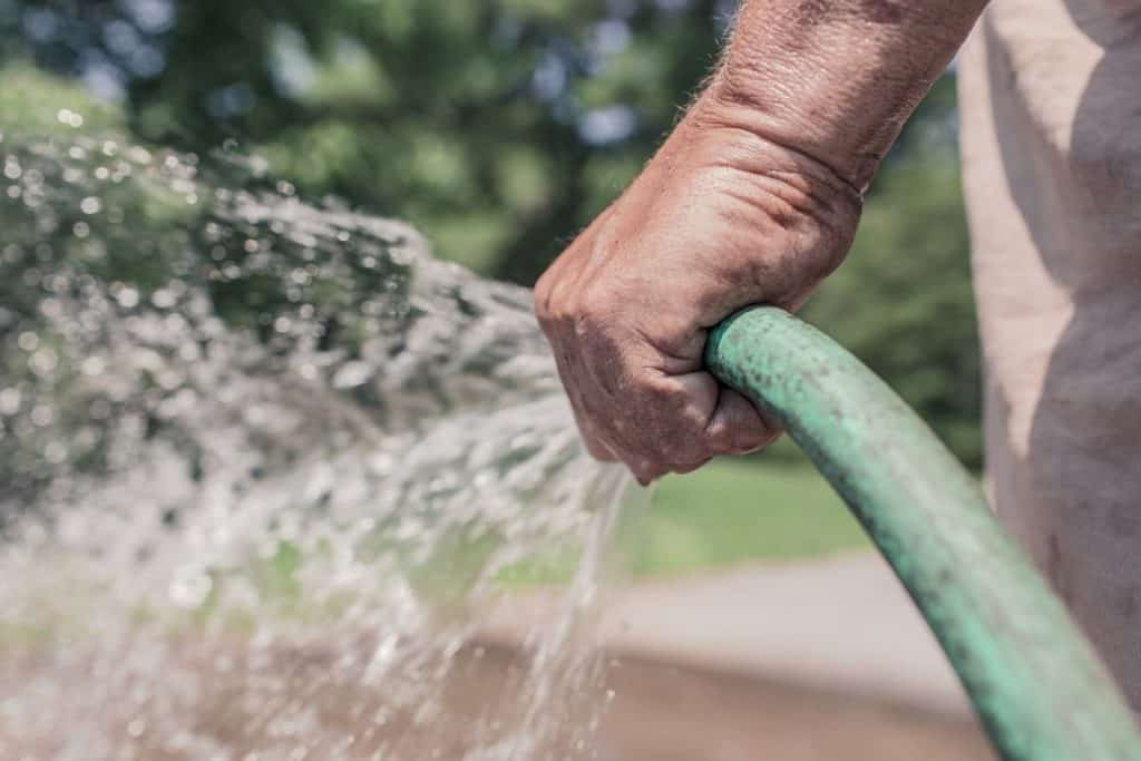 Watering regularly will improve your soil