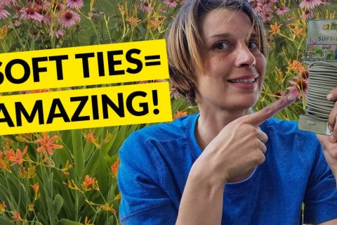 How to stake tall flowers in your garden for a natural look