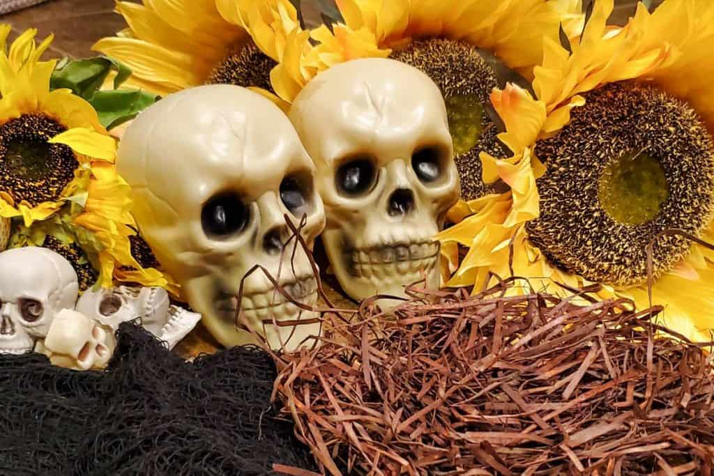 Sunflowers, skulls, raffia and other materials gathered together