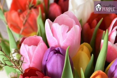 Tulip Varieties That Come Back Strong Every Single Year