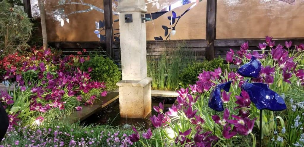 Pink and blue plants and reflection pond - fish sculptures
